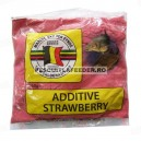 Aditiv  Van Den Eynde 250gr - Strawberry