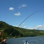 luci_la_pescuit