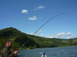 luci pescuit la feeder