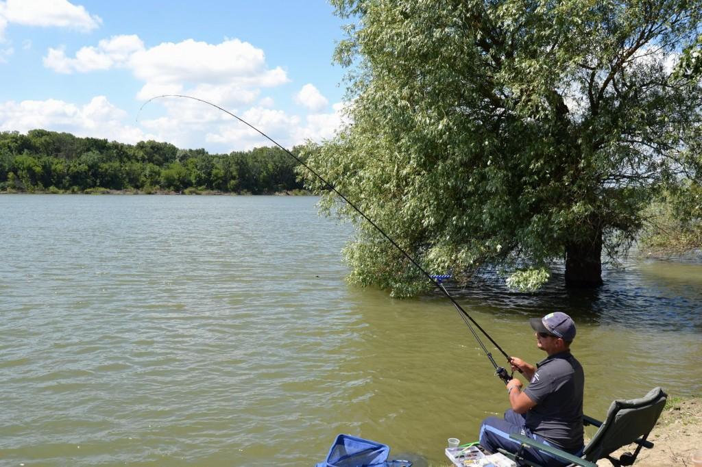 """Lansetele """"rapide"""" cu capcitate mare de amortizare a socurilor sunt perfecte la pescuitul socobarului"""