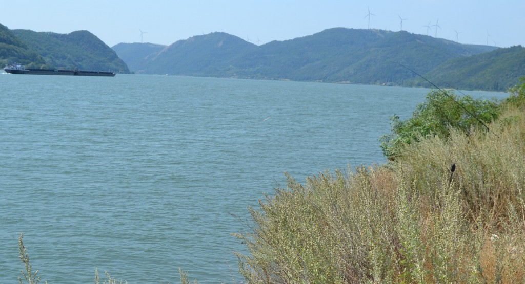 Curios dar am reusit sa gasim un loc inca nepescuit pe aglomerata clisura a Dunarii