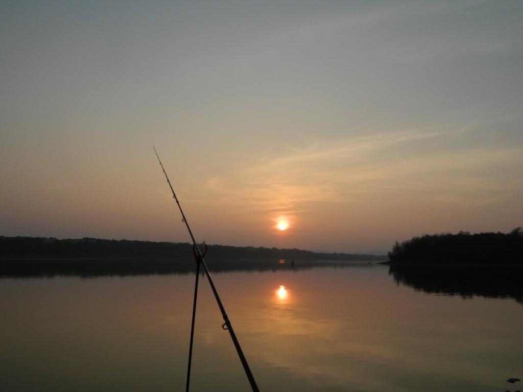 pescuit la feeder noiembrie