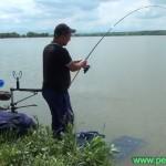 Pescuit la Crap cu Method Feeder pe Doripesco
