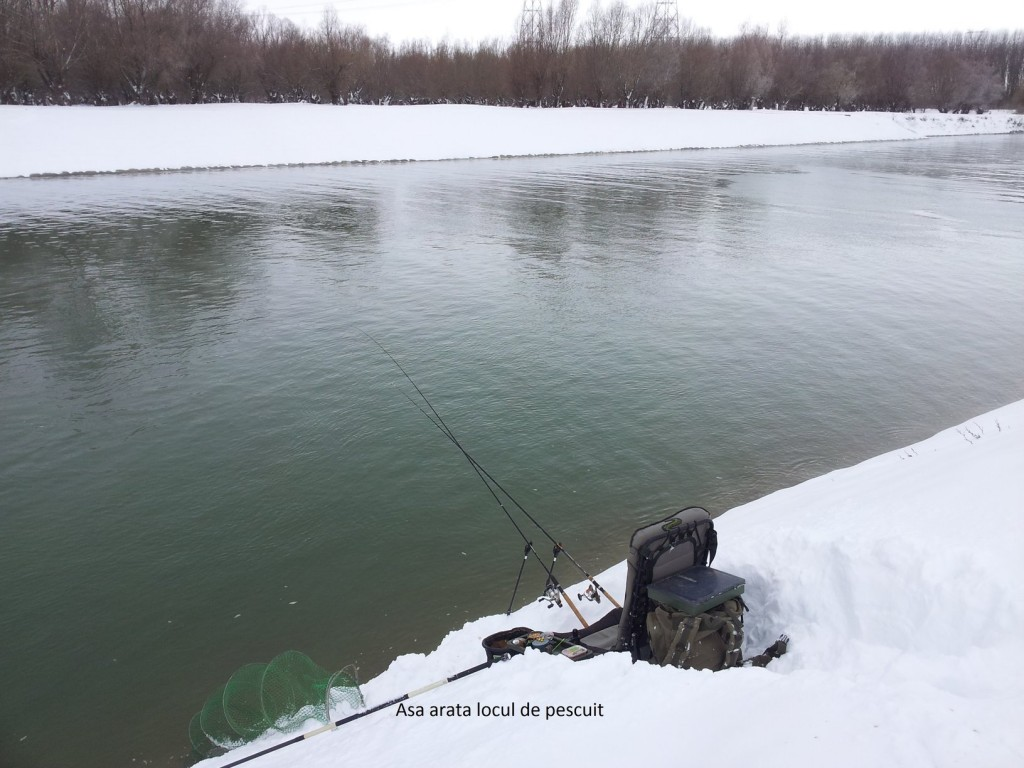 lansete pescuit la feeder iarna