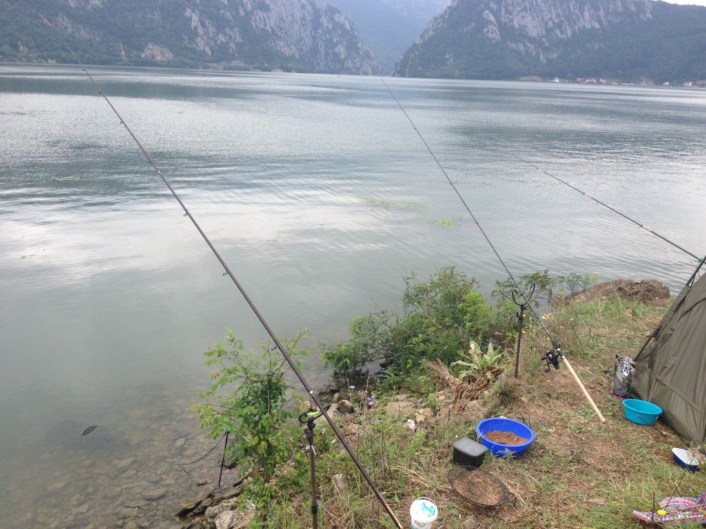 pescuit feeder dunare lansete