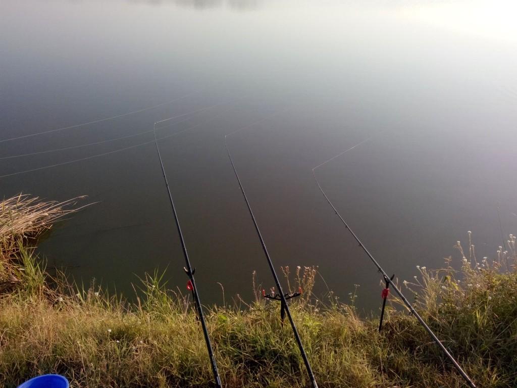 pescuit feeder balta lansete