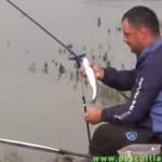 feederx scobar dunare pescuit
